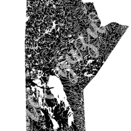 Manitoba mapped solely by water. This was created as a gift for a friend.