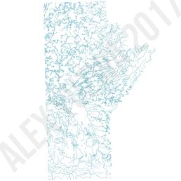 Manitoba Veins